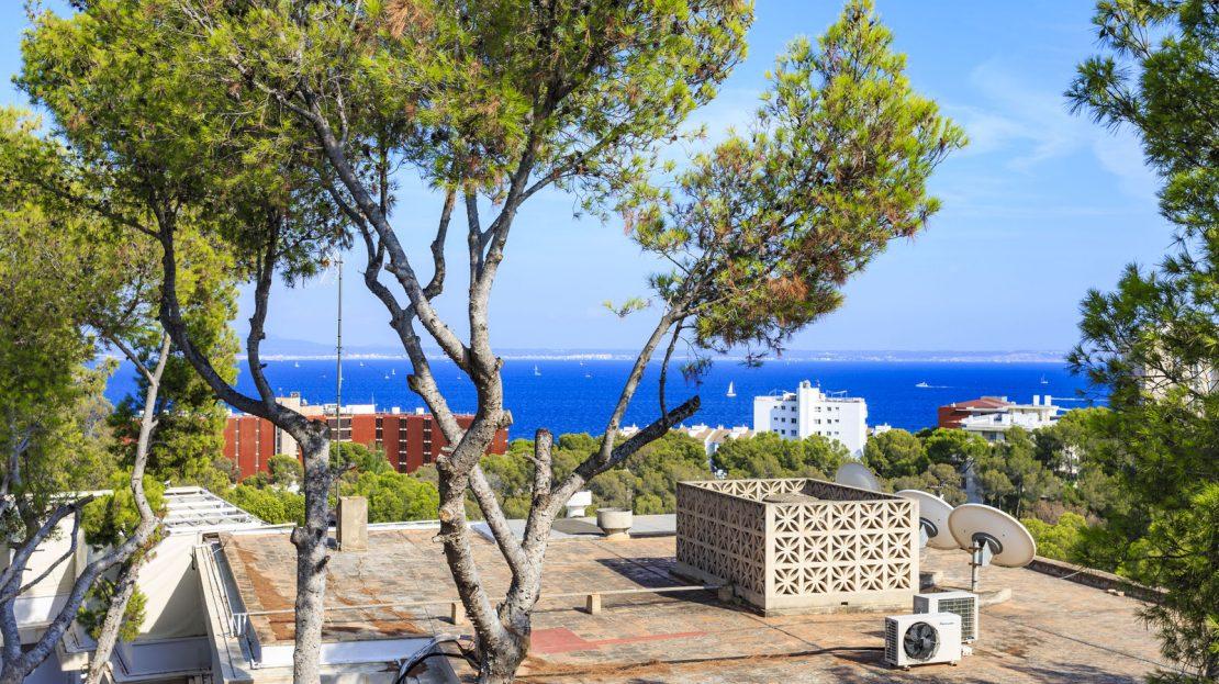 Apartment Cas Catala (3)